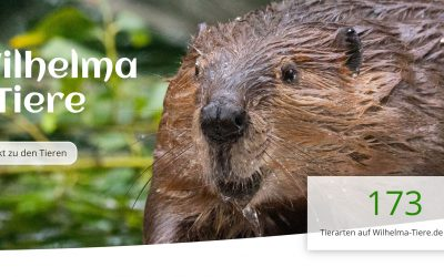 Wilhelma-Tiere.de mit neuer Optik