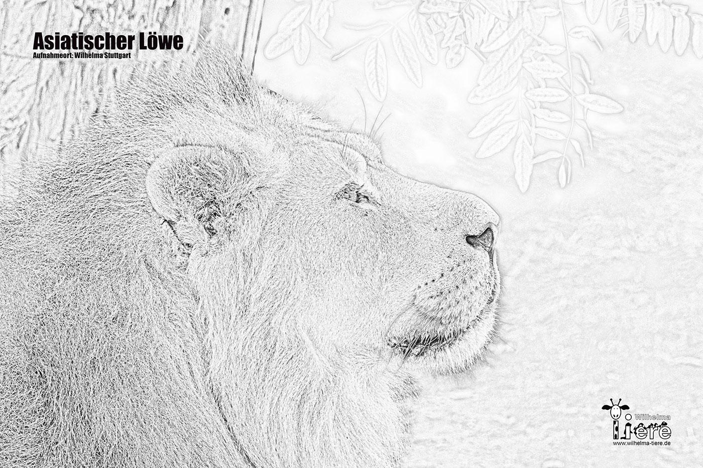 ausmalbilder tiere zoo  indone